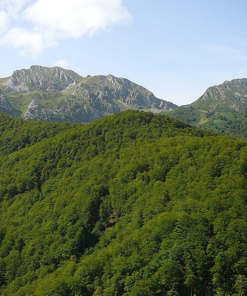 Parque Natural de Redes Senderismo Sermar